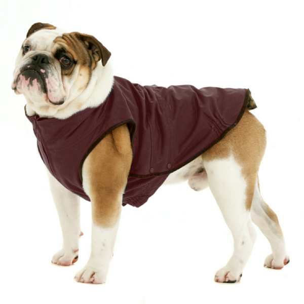Windsor Jacket for Bulldog - Deep Red