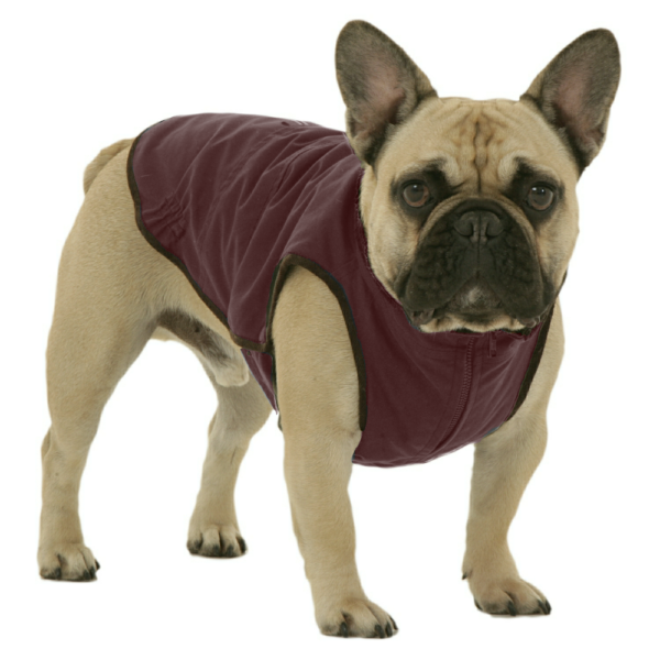 Windsor Jacket for French Bulldog - Deep Red